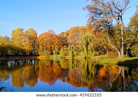 Beautiful autumn landscape. The pond in the autumn in city park