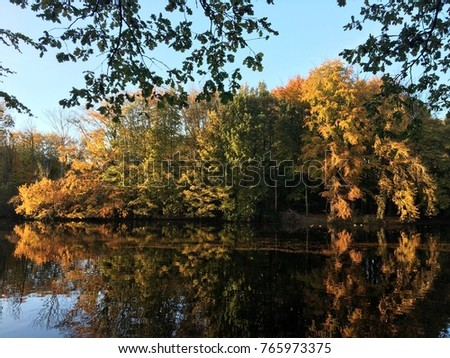 Beautiful autumn landscape with trees, reflecting in the water