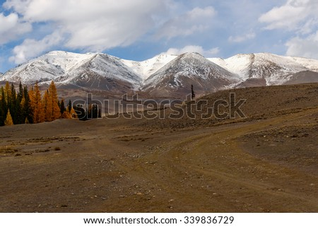 Beautiful autumn landscape with yellow and green coniferous forest, dirt road and hills on the background of snowy mountains and sky with clouds
