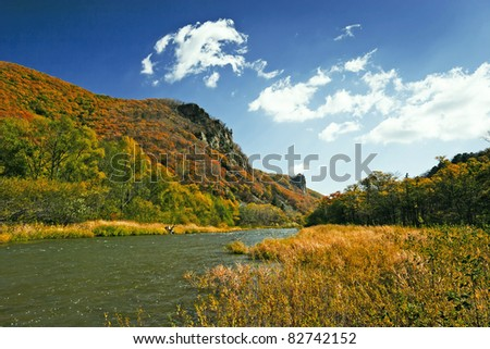 Beautiful autumn landscapm. mountain stream in autumn forest - stock photo