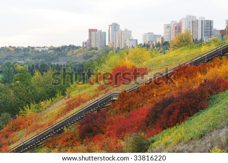 Beautiful autumn look of a stairway passing through colorful autumn bush in city edmonton downtown, alberta, canada - stock photo