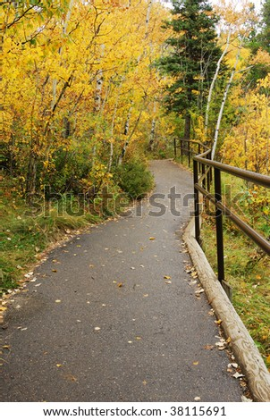 Beautiful autumn scene of a hiking trail in forest - stock photo