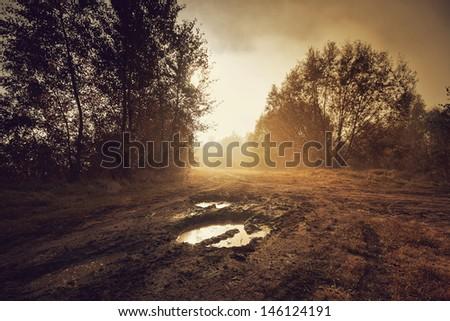 Beautiful autumn sunrise misty landscape. - stock photo