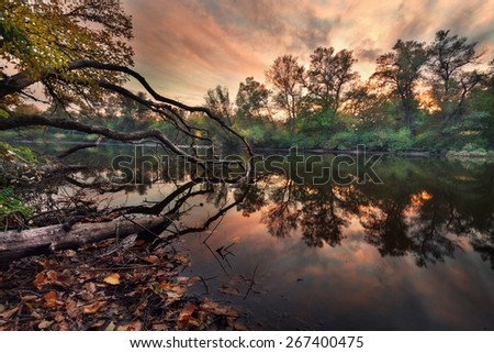Beautiful autumn sunset at the river in the forest with red and orange clouds in the sky. Green trees, branches  (Ukraine) - stock photo