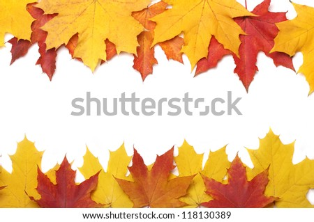 beautiful autumn yellow leaves background - stock photo
