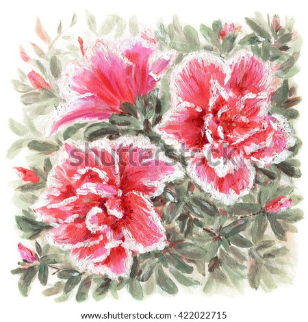 Beautiful Azalea flowers. Original acrylic hand painting illustration - stock photo