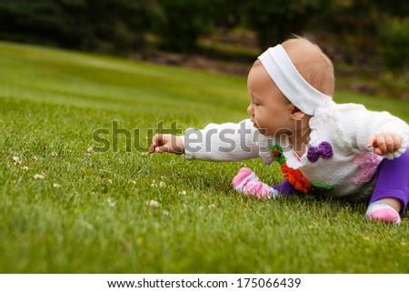 Beautiful baby girl playing on grass field - stock photo