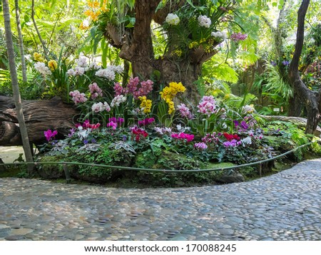 beautiful backyard garden park scene - stock photo