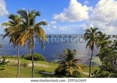Beautiful Bahia Honda State Park in the Florida Keys features palm trees and a view of the Overseas Highway. - stock photo