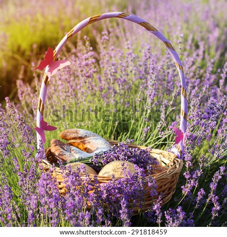 Beautiful basket with purple ribbon and sweet-stuff in meadow of lavender flowers - stock photo