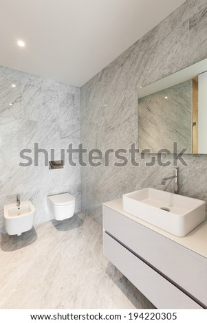 Beautiful bathroom marble of a modern apartment