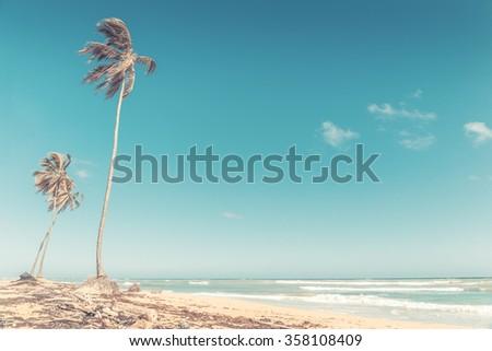 Beautiful beach and caribbean sea in Dominican Republic - stock photo