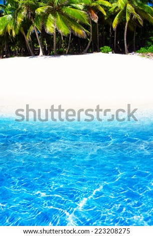 beautiful beach and tropical sea