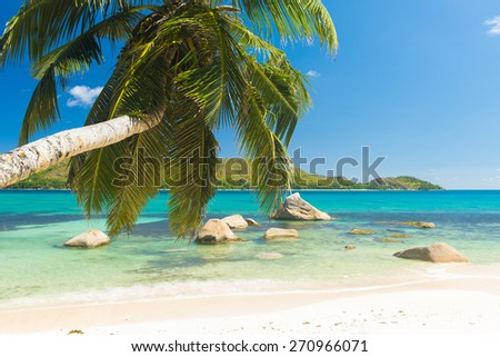Beautiful beach Anse Boudin seen from under the coconut palm, Praslin island, Seychelles.  - stock photo