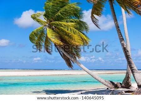 Beautiful beach at Tikehau atoll in French Polynesia - stock photo