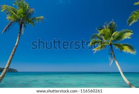 Beautiful Beach Green Getaway - stock photo