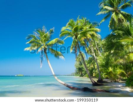 Beautiful Beach Idyllic Island  - stock photo