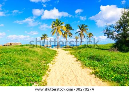 Beautiful beach in Cuba - stock photo