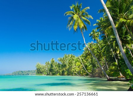 Beautiful Beach Relaxation In Peace  - stock photo