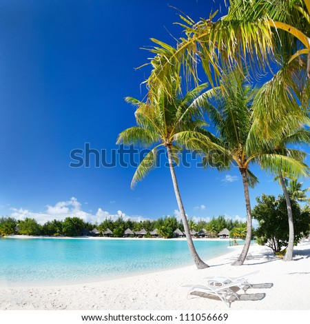 Beautiful beach with coconut palms on Bora Bora island in French Polynesia - stock photo