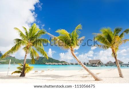 Beautiful beach with coconut palms on Bora Bora island in French Polynesia - stock photo