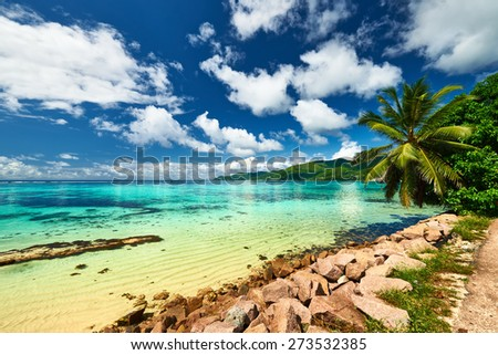 Beautiful beach with palm tree at Seychelles, Mahe - stock photo