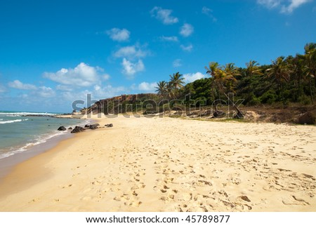 Beautiful beach with palm trees at Praia do Amor near Pipa Brazil