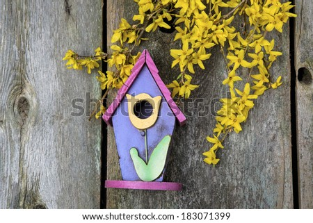 Beautiful birdhouses with Forsythia blooms on old wooden fence - stock photo