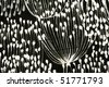 Beautiful black and white textile fireworks - stock photo