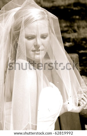 Beautiful Blond Bride - stock photo