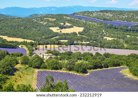 Beautiful blooming lavender and wheat fields seen from above on the Valensole Plateau in Provence, France - stock photo