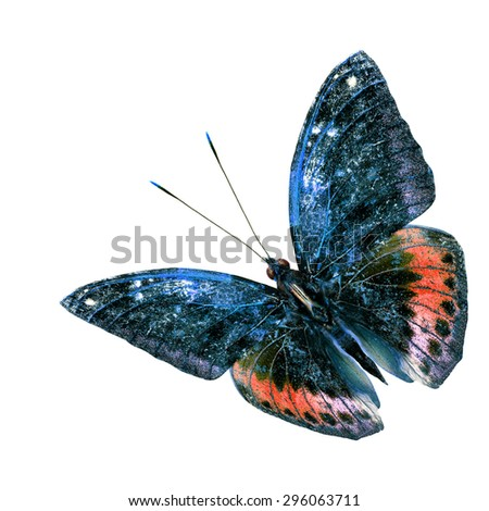 Beautiful blue and red flying butterfly isolated on white background - stock photo