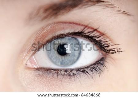 beautiful blue eye girl macro - stock photo