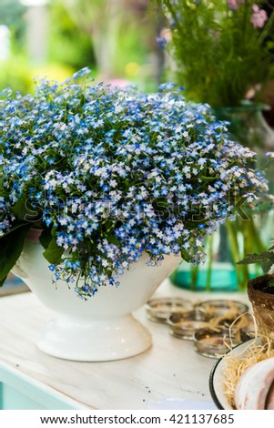 beautiful blue flowers in a porcelain vase on a table .vintage style , - stock photo