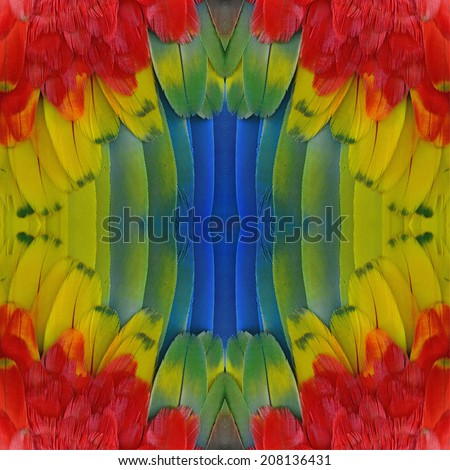 Beautiful blue pattern background texture made from  Scarlet Macaw feathers - stock photo