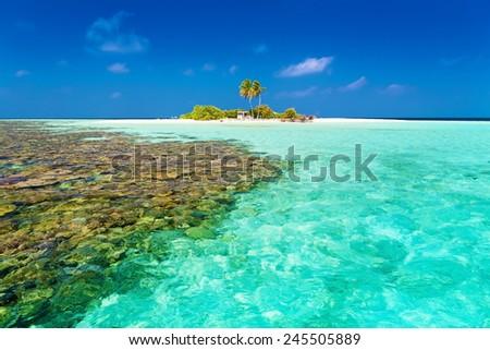 beautiful blue  sea tropical  Maldives  romantic  atoll island paradise luxury  resort about coral reef - stock photo