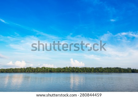 Beautiful blue sky and tropical mangrove forest at coast - stock photo