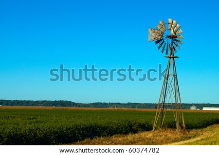 Beautiful blue sky bean field and a rusted old windmill - stock photo