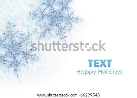 Beautiful blue snowflakes isolated, winter holiday background with copy space - stock photo