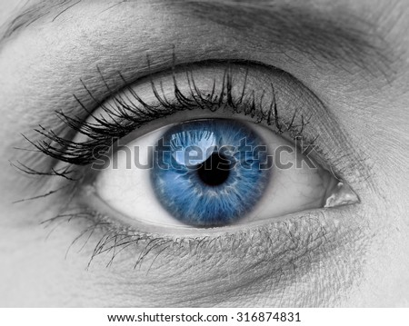 Beautiful blue woman single eye close up, black and white - stock photo