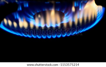 Beautiful blurry blue fires of a gas burner isolated unique photograph