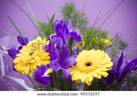 Beautiful boquet on purple ground - stock photo