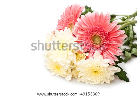 beautiful bouquet isolated on white - stock photo