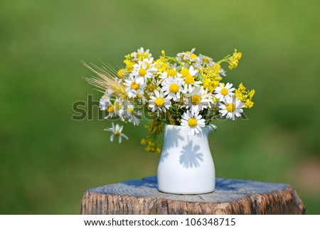 Beautiful bouquet of bright chamomiles in the white ceramic vase - stock photo