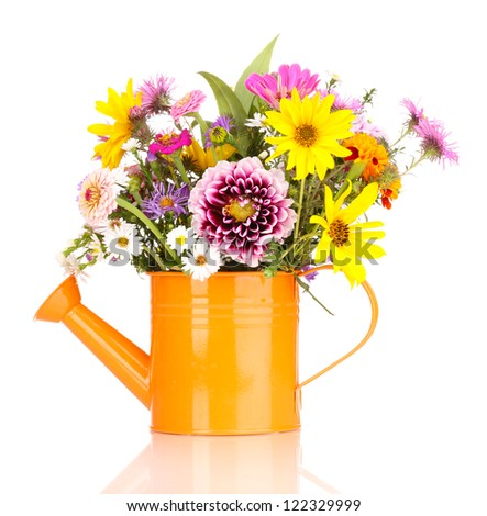 beautiful bouquet of bright flowers in watering can isolated on white - stock photo