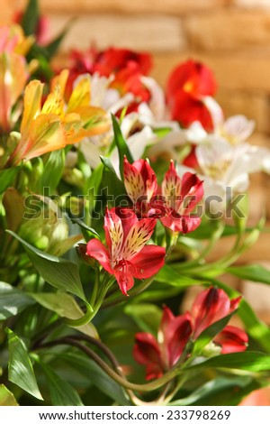 Beautiful bouquet of bright fresh flowers at sunny day. - stock photo