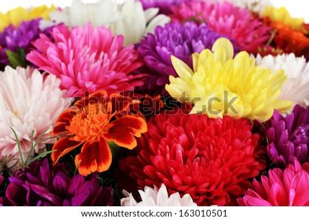 Beautiful bouquet of chrysanthemums close-up - stock photo