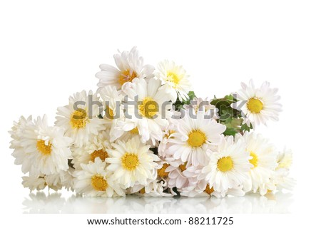beautiful bouquet of daisies isolated on white - stock photo