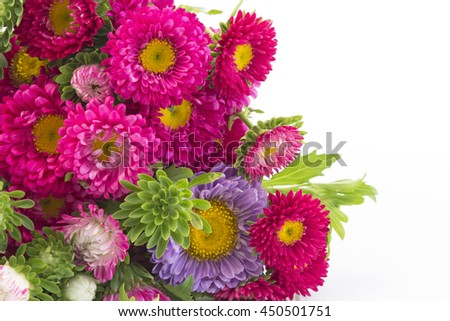 Beautiful Bouquet of Fresh Aster.