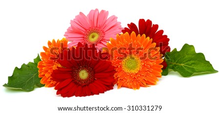 Beautiful bouquet of gerberas - stock photo